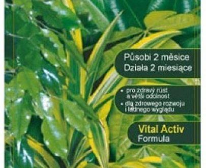Substral pałeczki do roślin zielonych 30 szt.-0