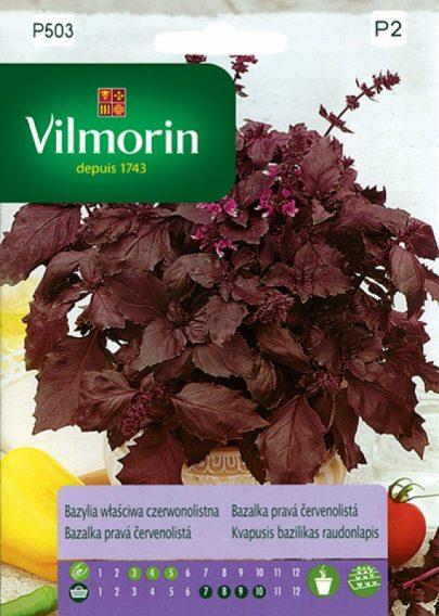 Bazylia właściwa czerwonolistna - Vilmorin-0