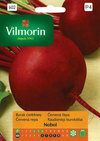 Burak ćwikłowy Nobol - Vilmorin-0