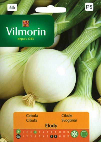 Cebula Elody - Vilmorin-0