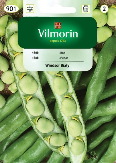 Bób Windsor Biały - Vilmorin-0