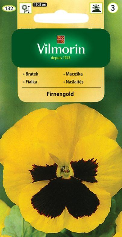 Bratek - Firnengold - Vilmorin-0