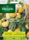 dynia ozdobna - Vilmorin-0
