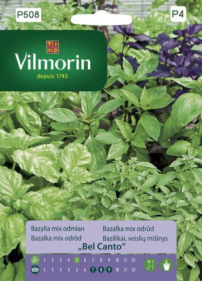 Bazylia mix odmian - Vilmorin-0