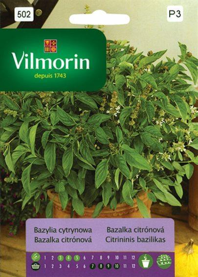 Bazylia cytrynowa - Vilmorin-0