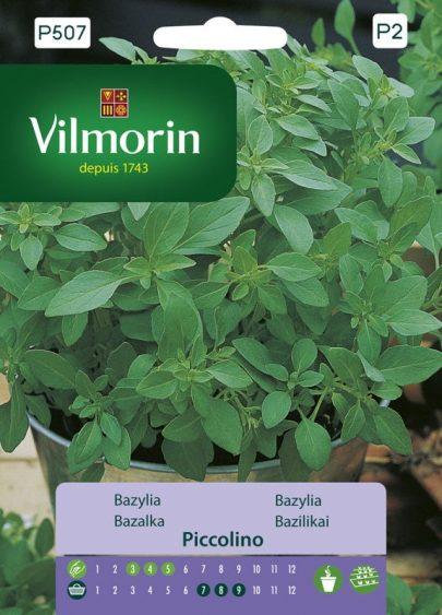 Bazylia - Vilmorin-0