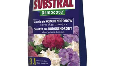 SUBSTRAL - Ziemia do rododendronów 20L-0