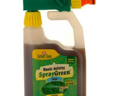 NAWÓZ DOLISTNY - SPRAY GREEN - TUJA I DAGLEZJA - 950ml-0
